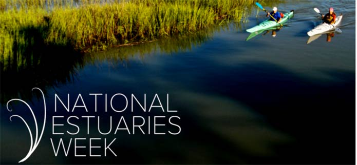 National Estuaries Week Celebrates Precious Coastal Resources