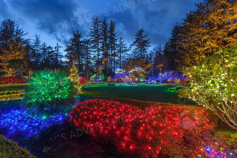 Shore Acres Christmas Lights 2020 Navigate the Holiday Lights at Shore Acres Like a Pro! | Oregon's