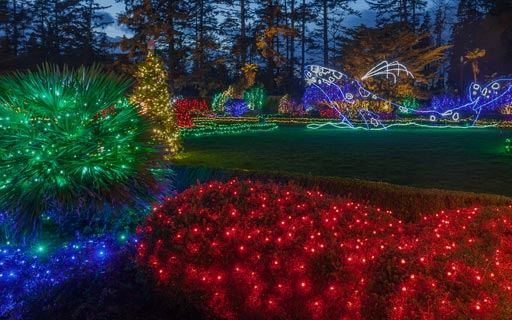 Holiday Lights - Nov 28 - Dec 31